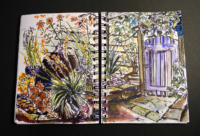 Sketchbook page, Terry's garden